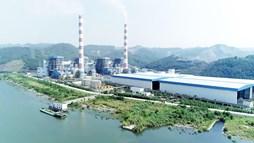 Nhiệt điện Quảng Ninh (QTP) sắp chi 450 tỷ đồng trả cổ tức năm 2020, tỷ lệ 10%