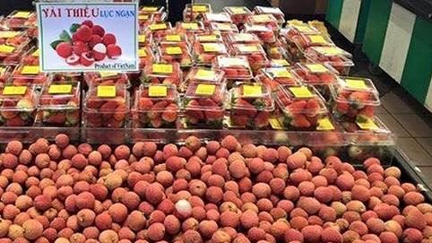 4 tấn vải thiều Việt tiếp tục lấp kín siêu thị Nhật, hộp 10 quả bán giá 125.000 đồng