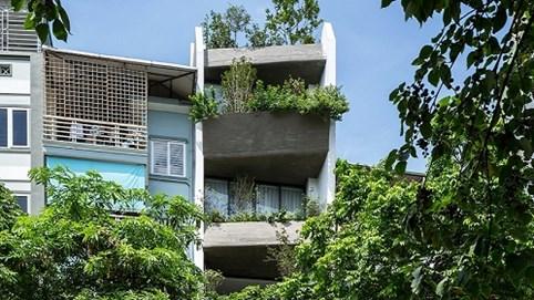 Ngôi nhà 49m2 nổi bật giữa phố cổ Hà Nội nhờ kiến trúc xanh mướt độc đáo