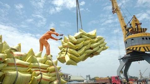 Gần 200 thương nhân xuất khẩu gạo
