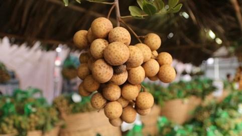 Nhãn tươi Việt Nam bán tại Australia gần 200.000 đồng/kg