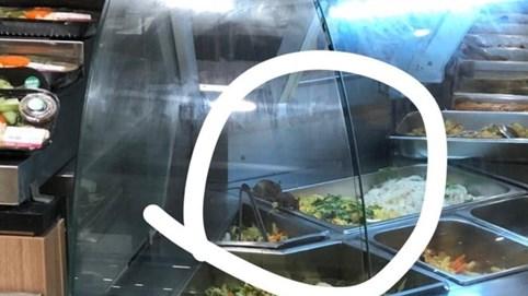 Chuột bò tại quầy thức ăn khiến dân mạng 'giật mình', Aeon Mall nói gì?