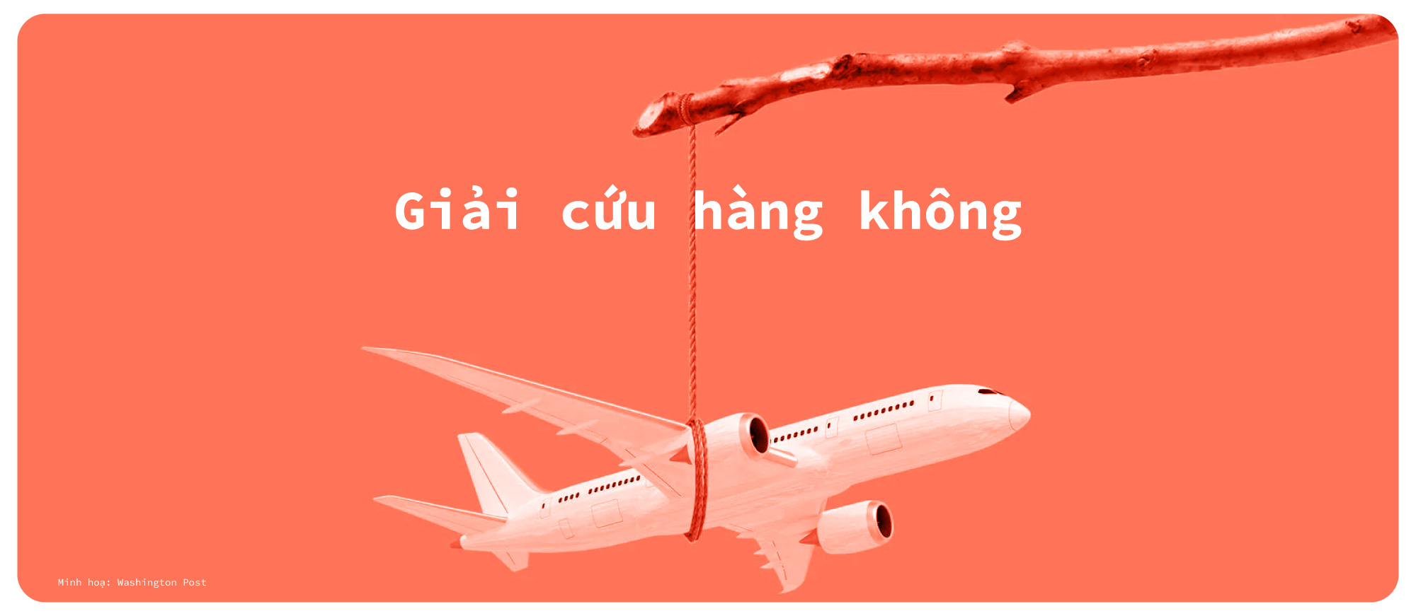 Hàng không Việt một năm 'bay trong bão' - Ảnh 7