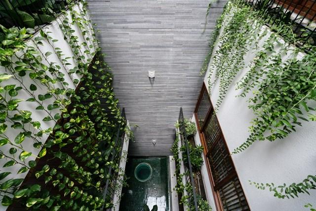 Với tinh thần đó, các kiến trúc sư cho biết không cố ý tạo ra sự khác biệt. Họ muốn hòa vào nhịp sống của đường phố bằng khoảng lùi, độ cao, hình thức, vật liệu và cây cối trong bối cảnh đương đại.