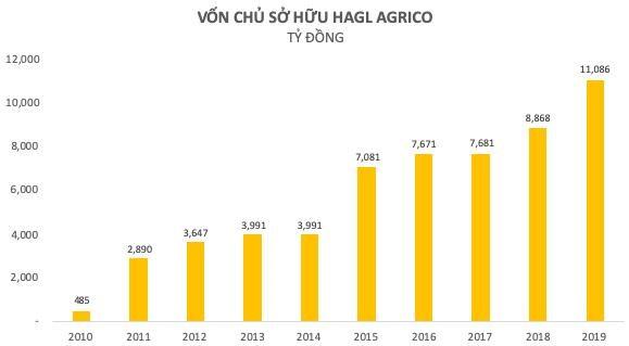Nhìn lại một thập niên đầy thăng trầm của HAGL Agrico - Ảnh 1