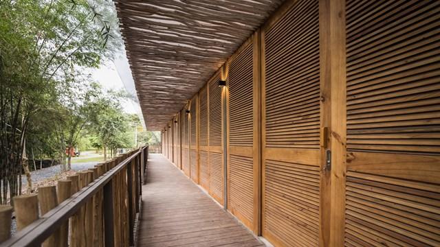 Mái nhà bằng trấu trộn, tường gạch phủ vôi tự nhiên trong dự án 'lớp học xanh' - Ảnh 3
