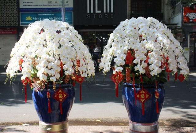 Cặp bình hoa lan công chúa tổng trị giá 60 triệu đồng được một chủ doanh nghiệp ở quận 7 đặt giao chưng tại nhà. Ảnh:Flower Box.