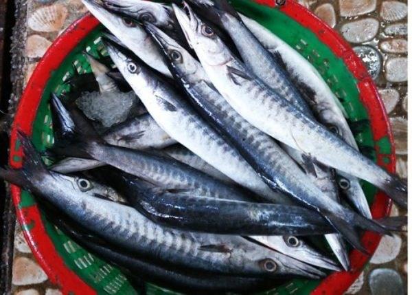 Khám phá sản vật miền Nam Việt Nam (Kỳ 24): biên mai An Thới, rượu mỏ quạ, hào bao, cá nhồng và ngọc trai Phú Quốc - Ảnh 1