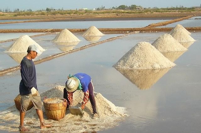 Khám phá sản vật miền Nam Việt Nam (Kỳ 25): gạo Một bụi đỏ Hồng Dân, muối, dừa nước và bồn bồn Bạc Liêu - Ảnh 2