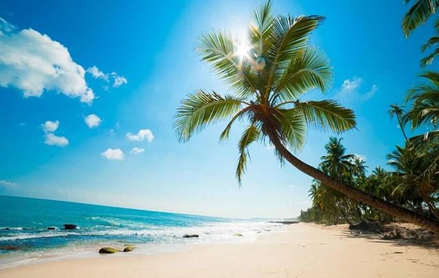 Bộ GTVT đồng ý kế hoạch thí điểm đón khách du lịch quốc tế đến Phú Quốc.