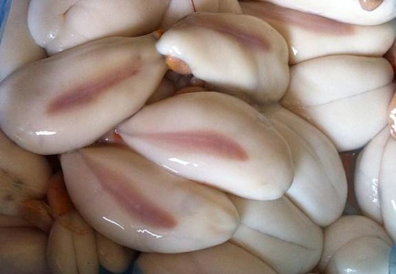 Trứng mực, nguyên liệu chính để làm nên món chả trứng mực, đặc sản của vùng Đất Mũi.