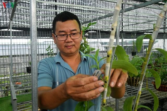 Anh Trịnh Đắc Toàn - chủ nhà vườn hoa lan Trịnh Toàn ở Đông La
