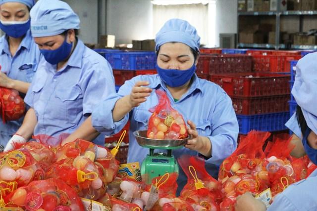 Công nhân kiểm tra chất lượng, cân và đóng gói sản phẩm - công đoạn sau cùng trong quy trình sản xuất thạch Việt Food.