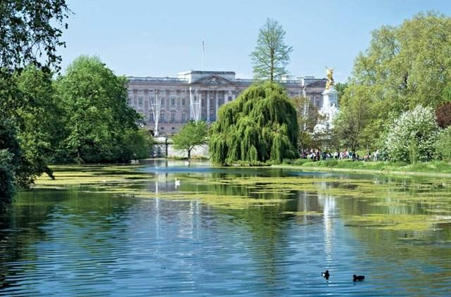 Hồ trung tâm của cung điện Buckingham