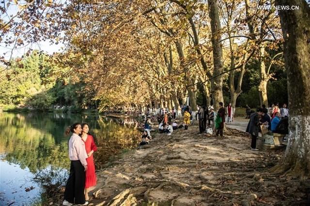 Du khách chụp hình ở Vườn quốc gia Huaxi ở Quý Dương, thủ phủ tỉnh Quý Châu, miền tây nam Trung Quốc vào ngày 25/10.
