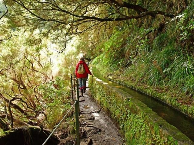 Tại Madeira vẫn còn những kênh thủy lợi bằng đá, luân chuyển nước xuyên qua đảo và cũng tạo ra những cung đường đi bộ tuyệt vời.