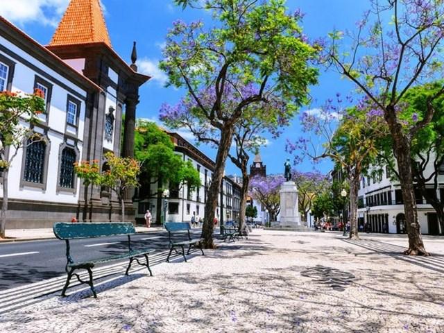 Thành phố lớn nhất của quần đảo Madeira là Funchal, với những nhà thờ cổ, quảng trường và đại lộ rợp bóng cây.