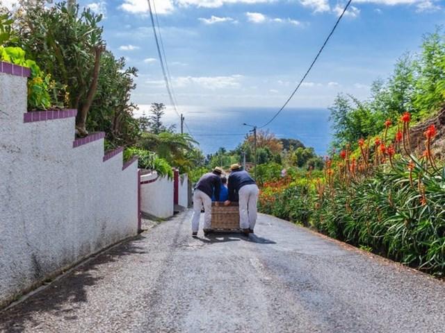 """Ở đây có nhiều con dốc. Du khách có thể trải nghiệm loại xe đẩy độc đáo để trượt dốc có tên """"carreiros""""."""
