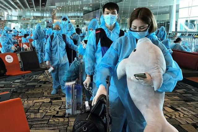 Hơn 50 tỷ đồng tiền bảo hiểm đang chờ lao động Việt Nam tại Hàn Quốc - Ảnh 1