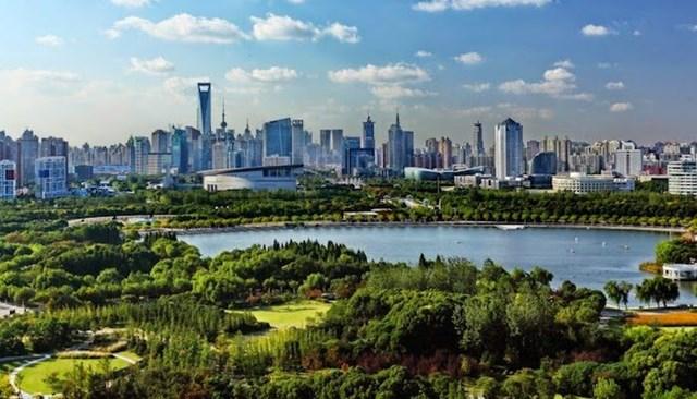 Nằm tại trung tâm quận phố Đông, Công viên Thế kỷ là công viên có diện tích lớn nhất tại thành phố Thượng Hải. Nơi đâysở hữu những bãi cỏ xanh mênh mông, hàng cây được cắt tỉa cầu kỳ, những khu vườn mang cả hai phong cách thiết kế cây cảnh Á - Âu.