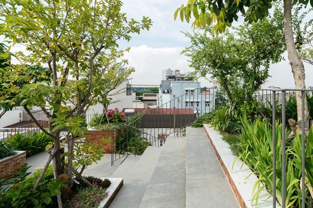 Công viên trên tầng thượng có diện tích 150m2. Với khoảng không gian lớn như vậy, các thành viên trong nhà có thể tạn bộ, trải nghiệm hoạt động tập thể dục sáng sớm hay thư giãn dưới bóng cây trên mái.