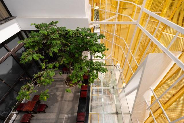 Dù tách biệt về không gian sử dụng, độc lập về lối đi nhưng cả công trình vẫn có sự kết nối, giao thoa bởi không gian chung là khoảng không và sân vườn.