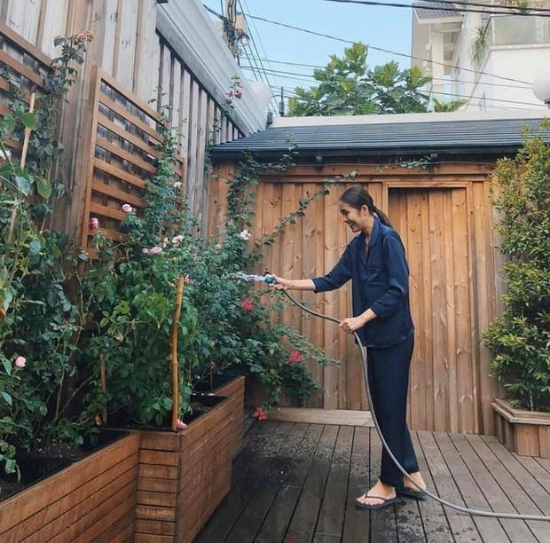 Bà xã Louis Nguyễn thiết kế một khoảng vườn nhỏ để trồng rau sạch và các loại hoa vì là một người thích cây cỏ.
