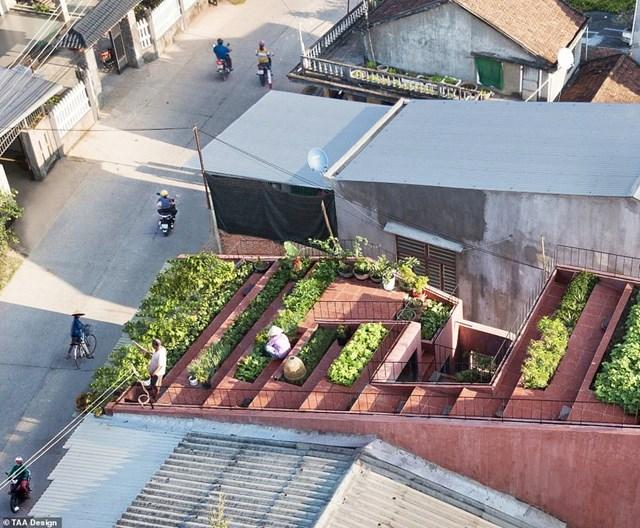 Ngôi nhà 7 bậc thang trên mái ở Quảng Ngãi đã giành chiến thắng ở hạng mục Nhà ở nông thôn và được lựa chọn là Dự án kiến trúc của năm. Phần mái của công trình được thiết kế theo dạng bậc thang, vừa giúp gia chủ dễ di chuyển vừa tạo độ dốc thoát nước. Theo Dezeen, thiết kế của ngôi nhà là giải pháp sáng tạo để giải quyết vấn đề đô thị hóa nông thôn, phù hợp với lối sống của người địa phương.