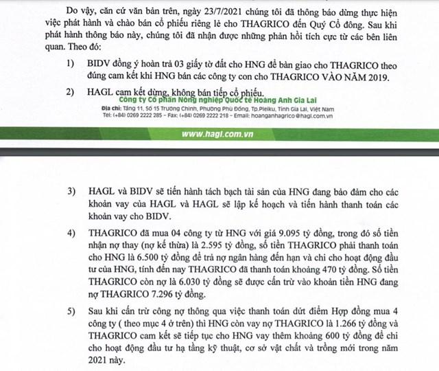 BIDV đã hoàn trả giấy tờ đất cho HNG, Thagrico sẽ tiếp tục rót vốn - Ảnh 1