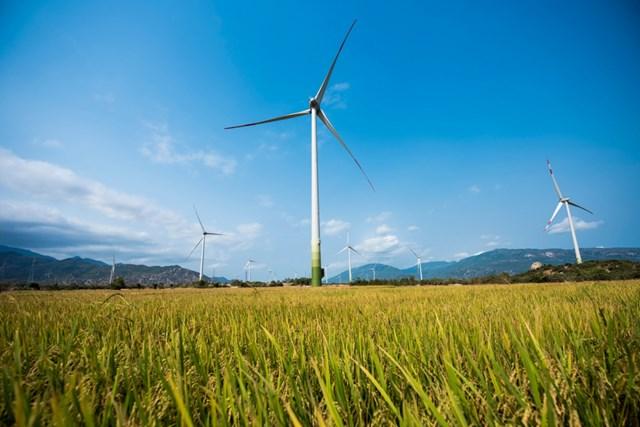 Công ty em trai Chủ tịch Bitexco Group mua cổ phần dự án điện gió 3.700 tỷ đồng tại Gia Lai