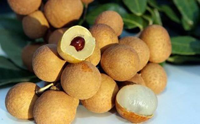 Những trái nhãn chín màu vàng sẫm.
