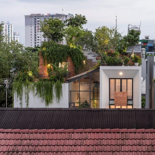 Công viên thu nhỏ ngay trên tầng thượng của ngôi nhà. (Ảnh: Quang Trần)