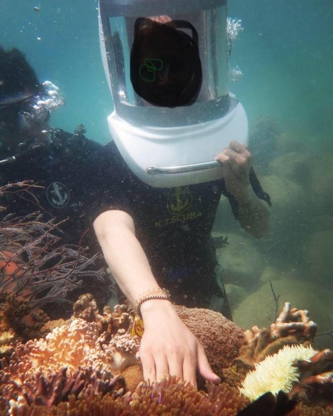 """Vô tư sờ vào san hô khi lặn biển Nha Trang: Hành động tưởng vô hại nhưng đang """"bức tử"""" cả san hô và hệ sinh thái - Ảnh 2"""