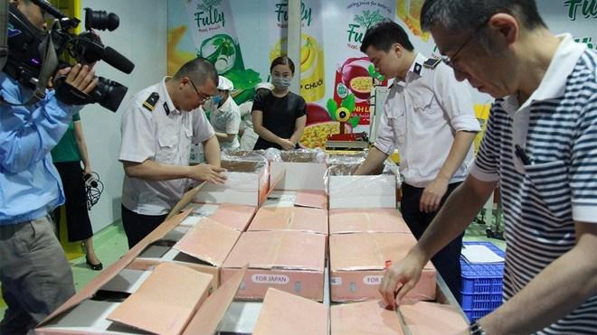 Chi 500 triệu đồng mời chuyên gia Nhật Bản giám sát xuất khẩu vải thiều - Ảnh 1