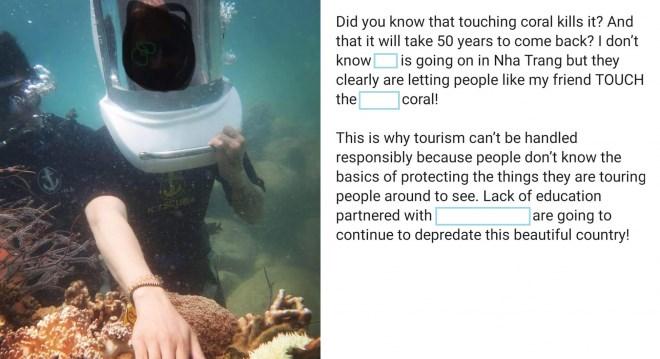 """Vô tư sờ vào san hô khi lặn biển Nha Trang: Hành động tưởng vô hại nhưng đang """"bức tử"""" cả san hô và hệ sinh thái - Ảnh 1"""