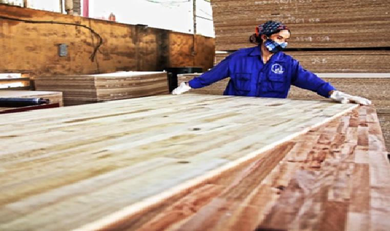 Dự án FDI từ Trung Quốc tăng nhanh: Doanh nghiệp ngành gỗ mừng ít, lo nhiều… - Ảnh 1